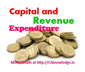 Capital And Revenue Expenditure Essay Checker - image 3