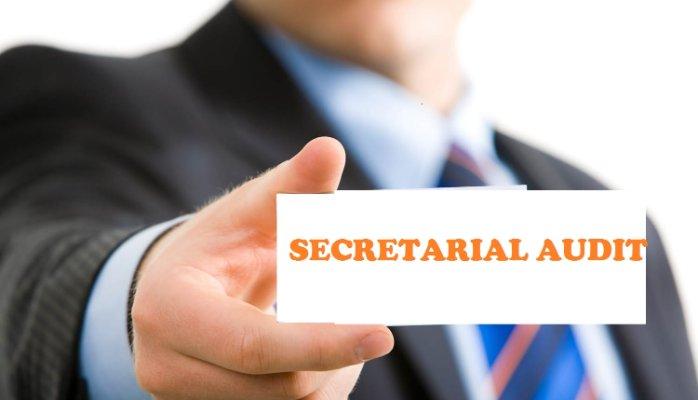 limits of Secretarial Audit