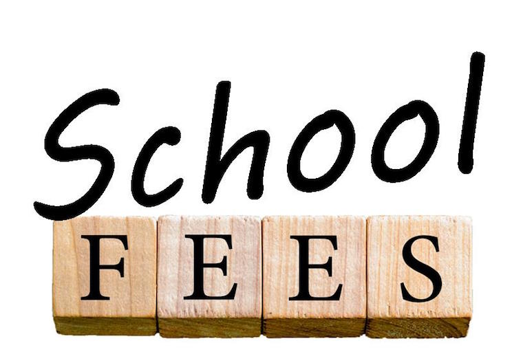 Deduction for School Fees Paid u/s 80c