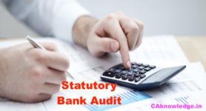 Statutory Bank Audit