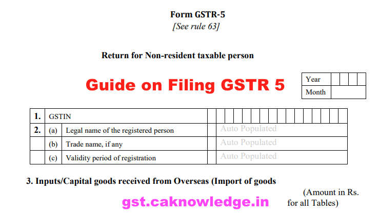 Guide on Filing GSTR 5