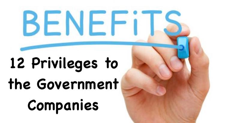 12 Privileges to the Government Companies