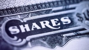 Checklist for Allotment of Shares Through Private Placement