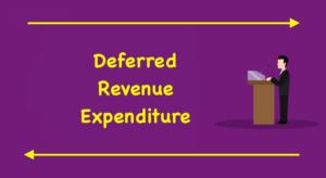 Deferred Revenue Expenditure
