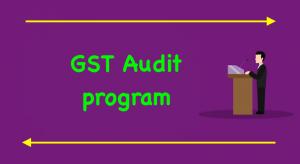 GST Audit program