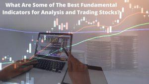 Best Fundamental Indicators