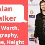 Alan Walker Net Worth